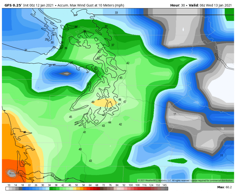 gfs-deterministic-seattle-gust_swath_mph-0517600.png