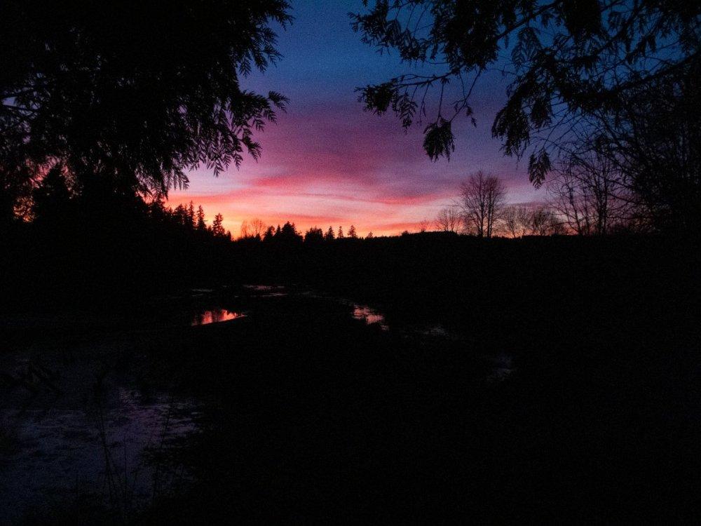sunset011921.thumb.jpg.0c1f50f6f34e4c31824c3541810021aa.jpg