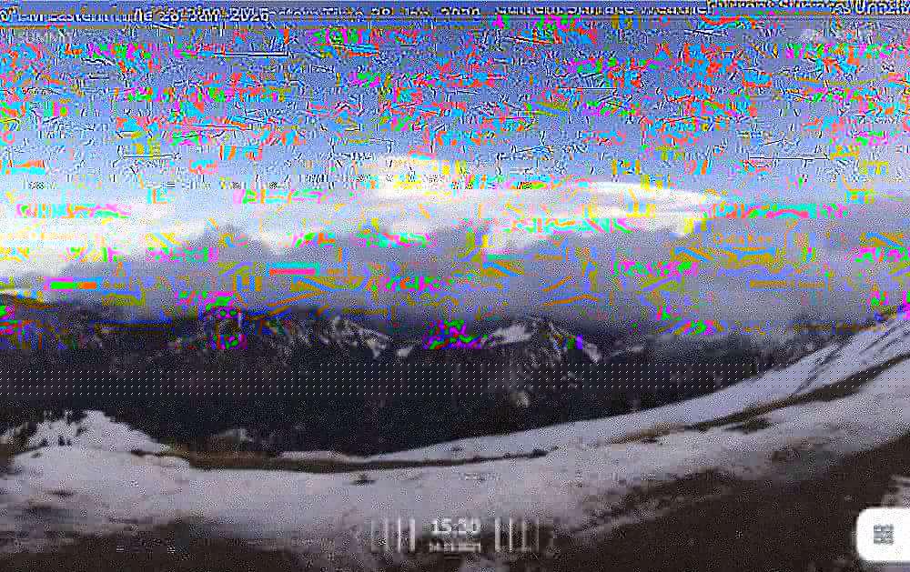 PXL_20210203_140709842.jpg