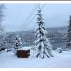 Skagit Weather